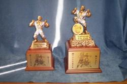 special fight trophies