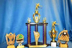 various pool special trophies